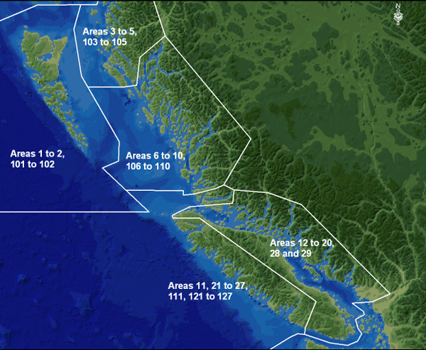 Rockfish Conservation Area Overview