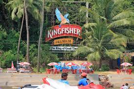 Kingfisher business failure story