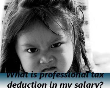 what is professional tax