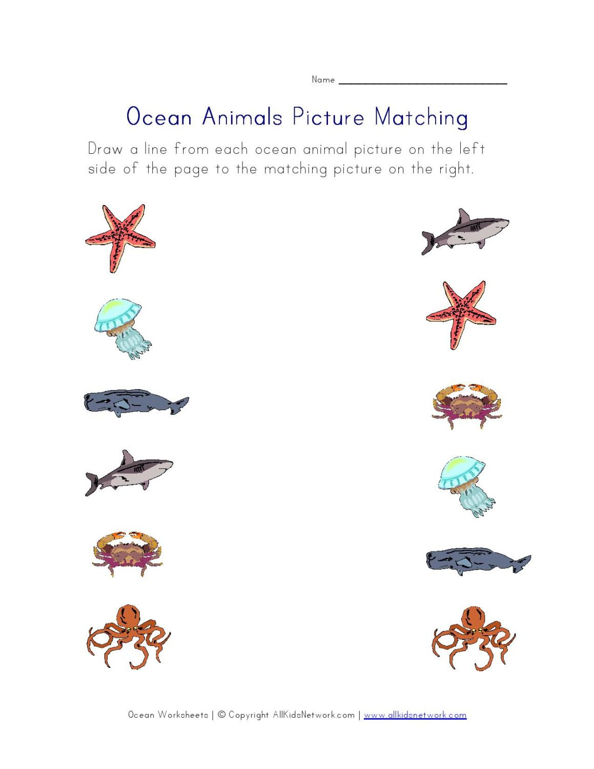 Ocean Animals Pictures Worksheet