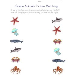 Activities and Worksheets for Preschoolers - Pacific Beach Coalition [ 1024 x 791 Pixel ]