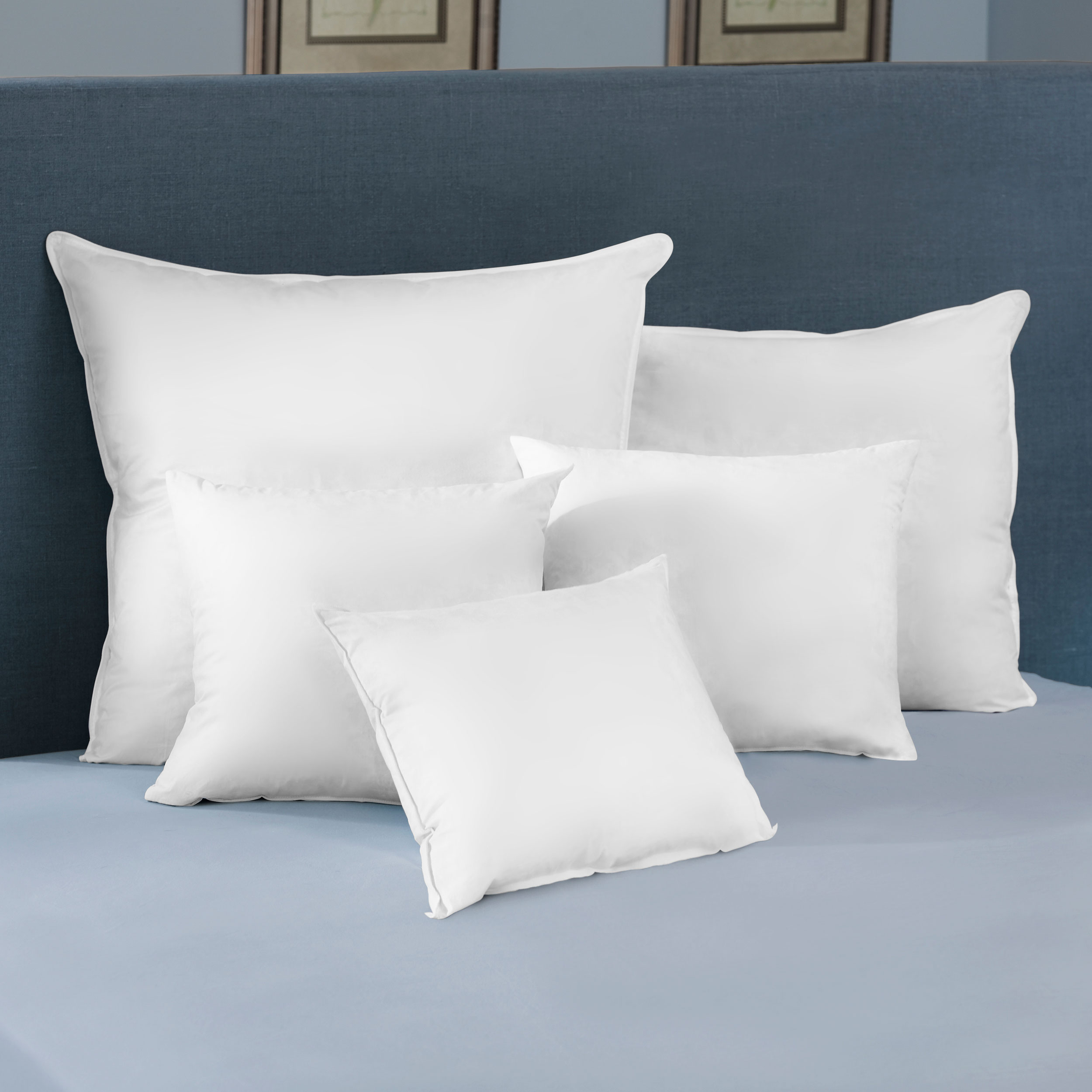 euro feather pillow inserts pacific