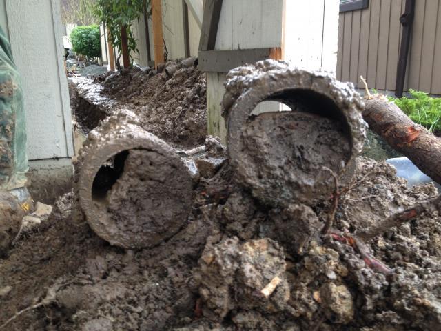 perimeter drains and drain tiles