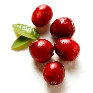 https://i0.wp.com/www.pacifichealth.info/images/cranberries.jpg