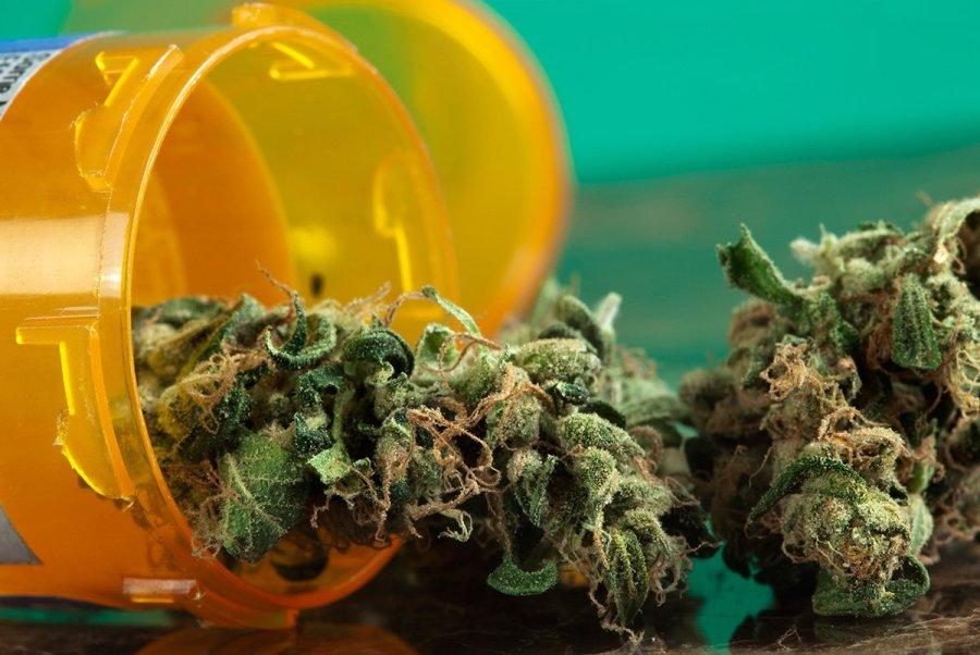 buy-marijuana-seeds-burlington
