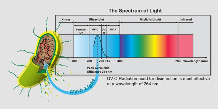 Diagram Of Germs Uvc Spectrum Of Light Chart Pacific Water