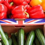 Brexit UK packaged food industry