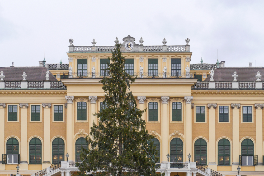 Christmas Day in Vienna {Video}