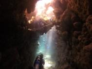 Cave - Dolphin House
