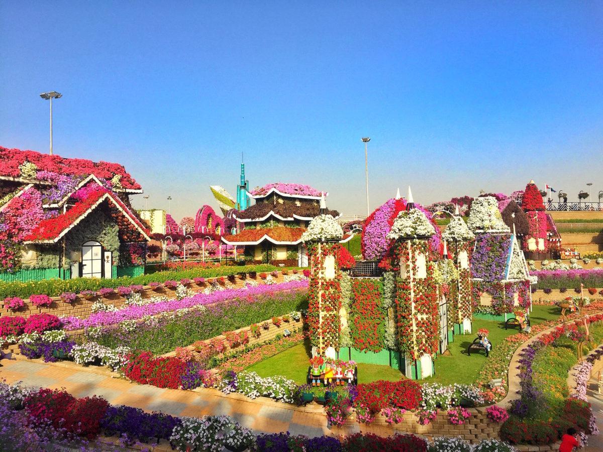 View Dubai Miracle Gardens | Instagram, Packs Light