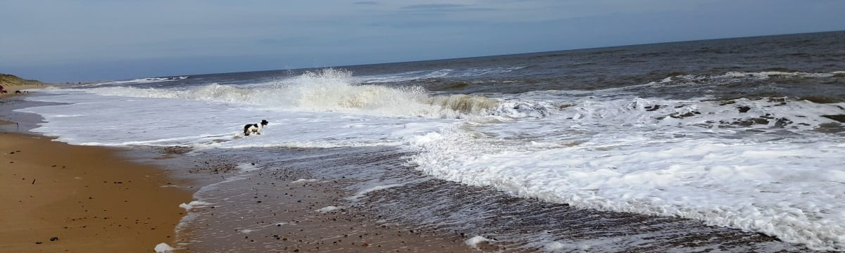 Long Beach Camping and Touring Site, Hemsby, Norfolk