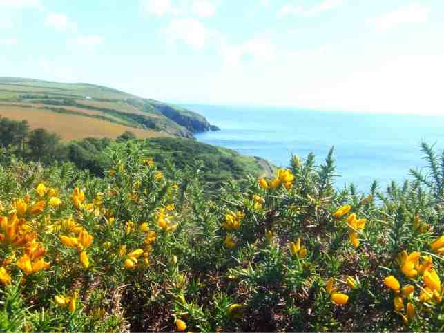 Isle Of Man Travel Guide Things To Do Where To Eat Places