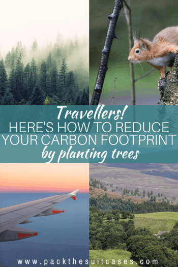 Reduce your carbon footprint by planting trees | PACK THE SUITCASES