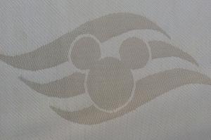 Disney Cruise Line family vacation
