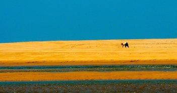 Viagens em oferta para a Tunísia na Top Atlântico