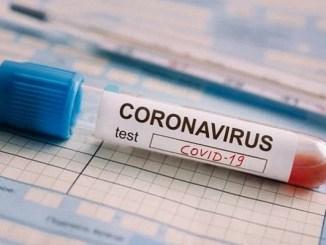 OMS distribuirá 120 millones de pruebas rápidas de Covid-19