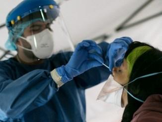 Reportan 73 mil 493 muertes por coronavirus en México