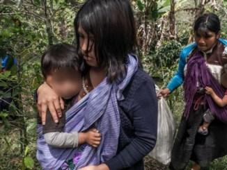 Reportan 3 personas desplazadas con heridas tras ataques en Chiapas