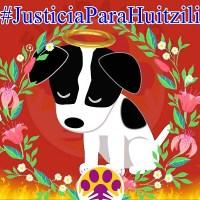 """Exigen #JusticiaParaHuitzilli, cachorro quemado vivo """"por diversión"""" en Guanajuato"""