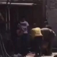 Familia mata a golpes a perrito, en Tlalnepantla #VIDEO (IMÁGENES FUERTES)