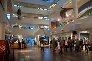 Main entrance atrium