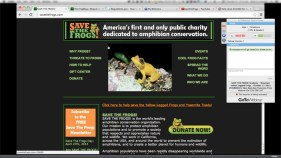Pre-show site information