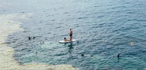 The Stand-Up Paddle board Beginner's Guide: How to SUP Like a Pro