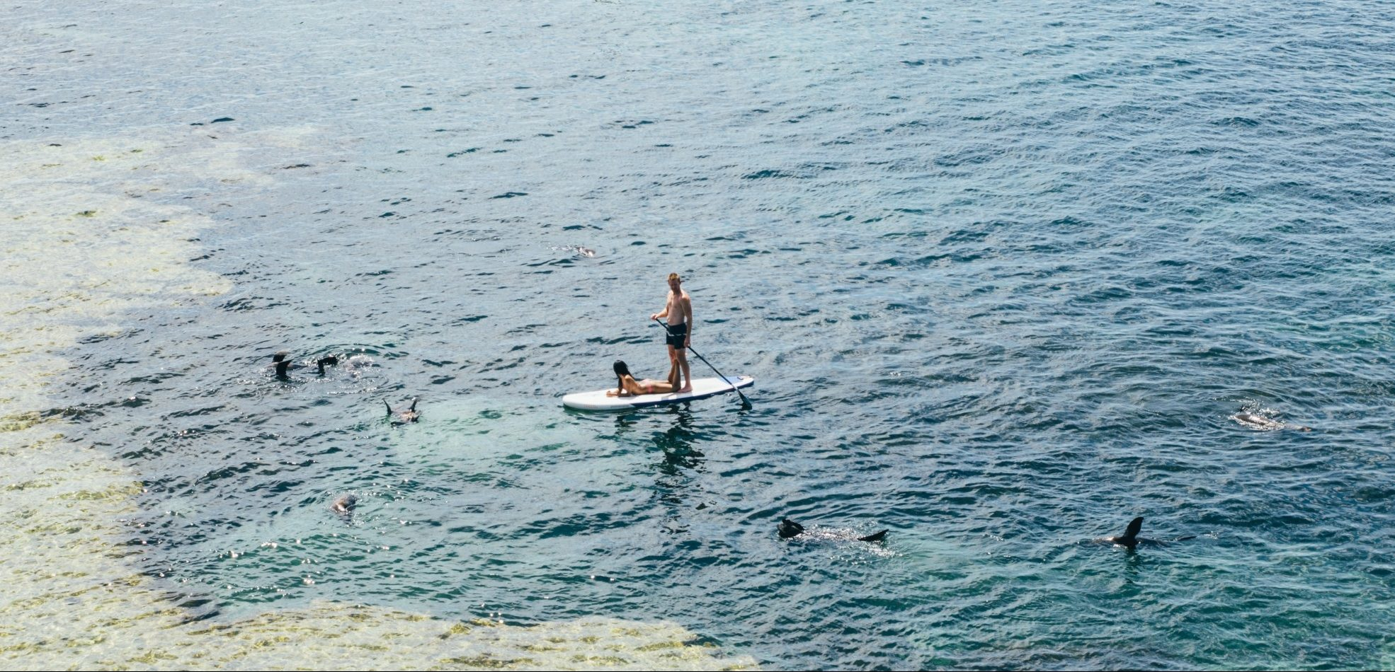 The Stand-Up Paddleboard Beginner's Guide: How to SUP Like a Pro