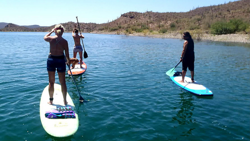 Paddle Boarders Do it Standing Up on Lake Zurich