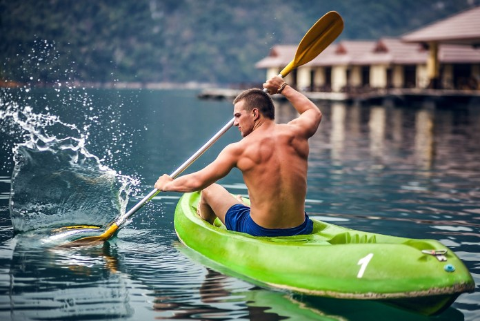 Image result for kayaking muscle