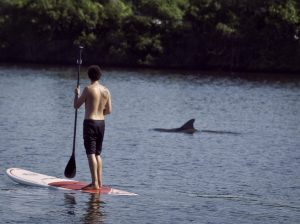 Best SUP Paddle board and kayak rental, lessons and tours in Vero Beach Florida