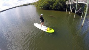 Paddle board and kayak rentals lessons tours and sales in vero beach florida