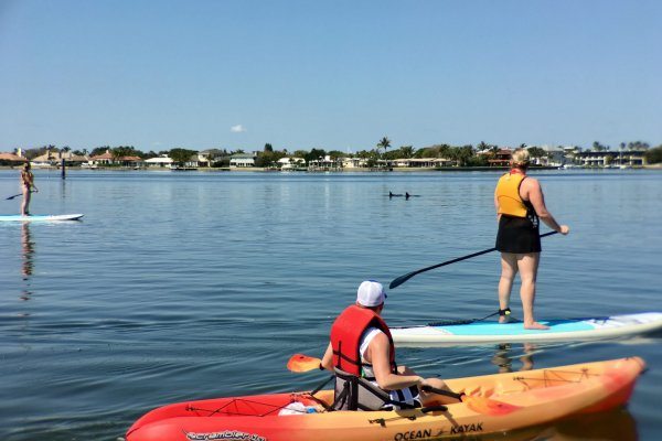 Kayak and Paddle Board with Dolphin on the Indian River Lagoon in Vero Beach Florida