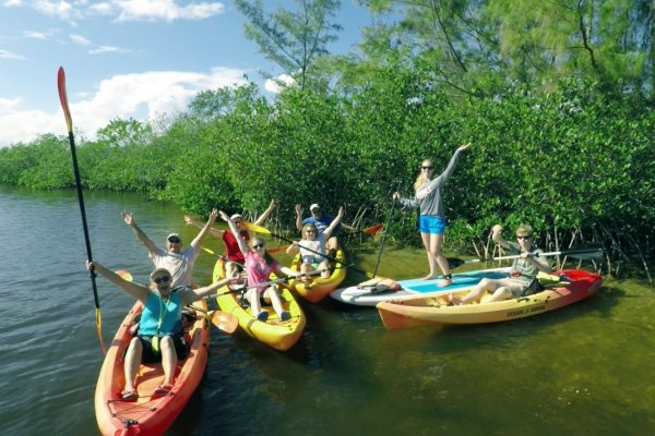 Kayak and paddle board tour