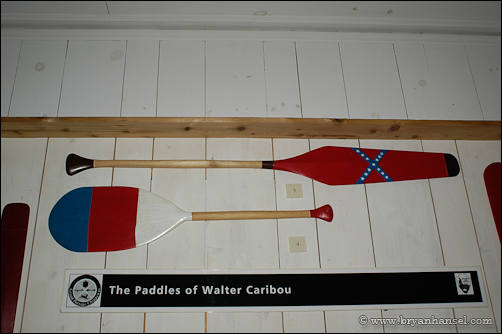 Paddles of Walter Caribou