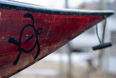 Turtle kayak decal