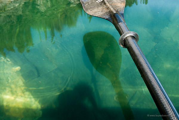 Werner Cyprus review - a carbon fiber kayak paddle