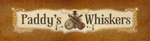 Paddy's Whiskers - Devon Based Irish Band