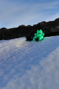 Welshot Monkey sliding down the Snow / Ice drifts