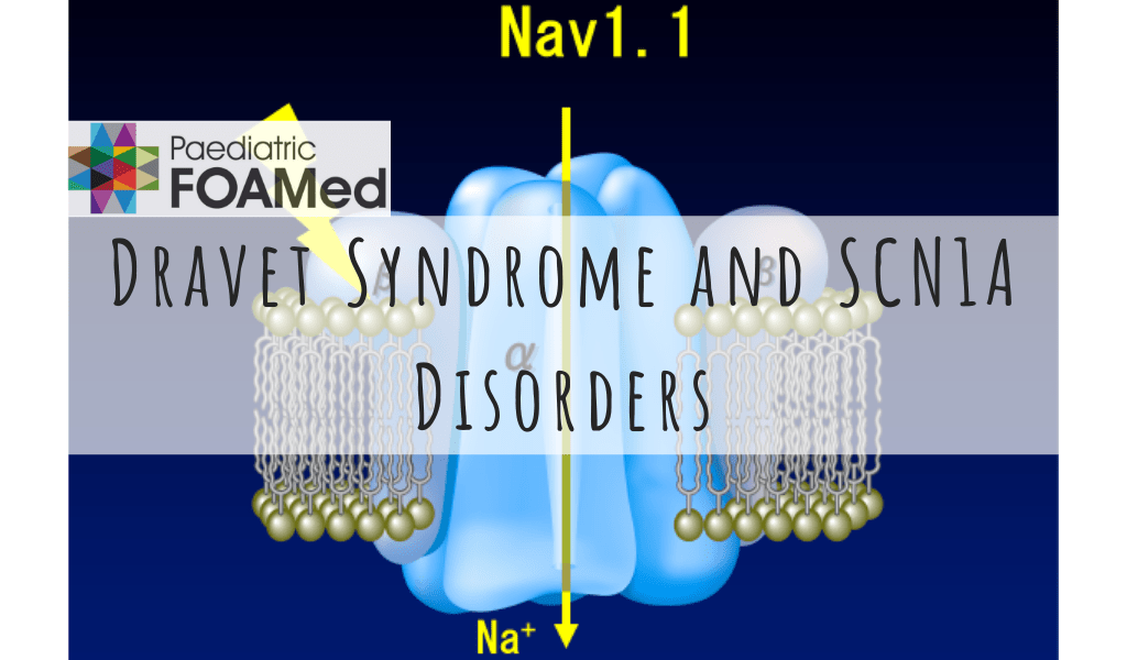 Dravet Syndrome and SCN1A Disorders