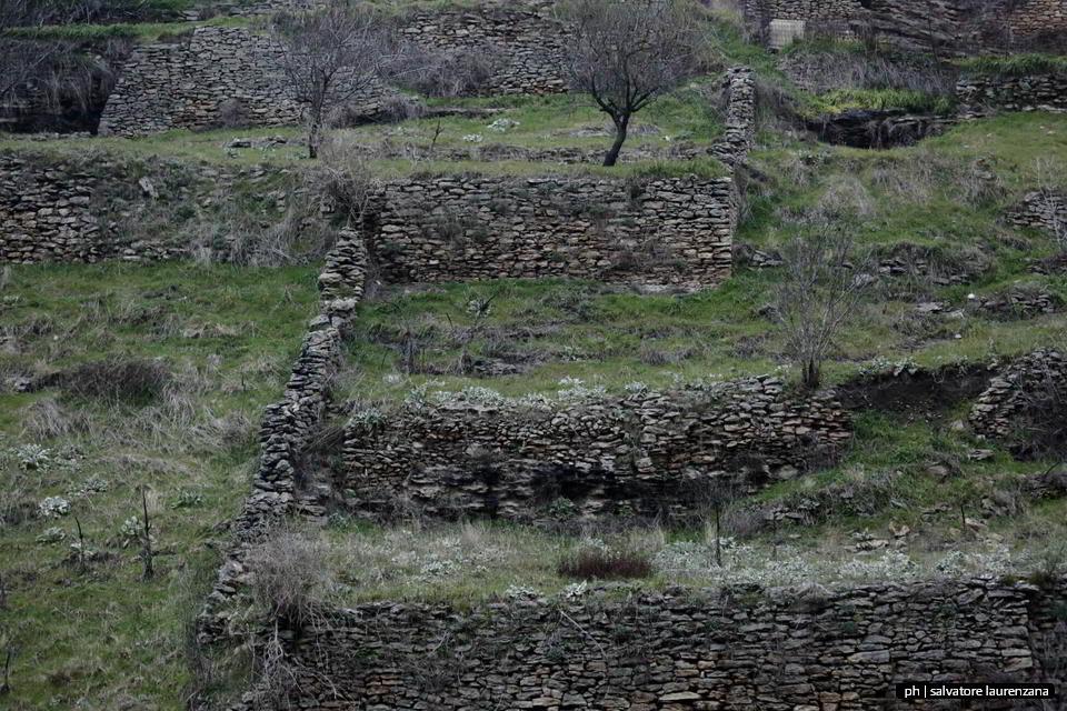I paesaggi agricoli tradizionali in Basilicata
