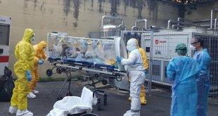 "Piedimonte Matese – Coronavirus, la ""strage"" dei veterinari: 12 positivi su 20 dipendenti Asl"