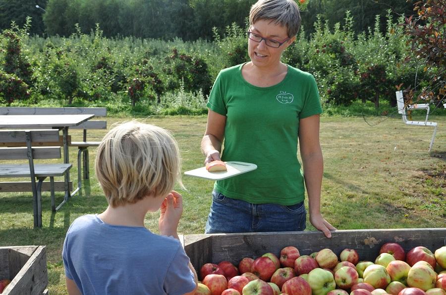 Provsmakning PA Frukts gårdsförsäljning