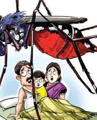 Dehradun Dengue Update: