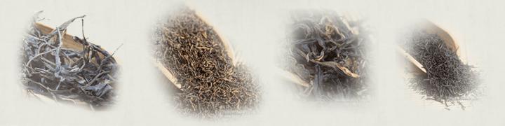 Big,medium or small tea leafs.
