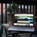 Websites You Should Utilize For Your Next Travel Destination