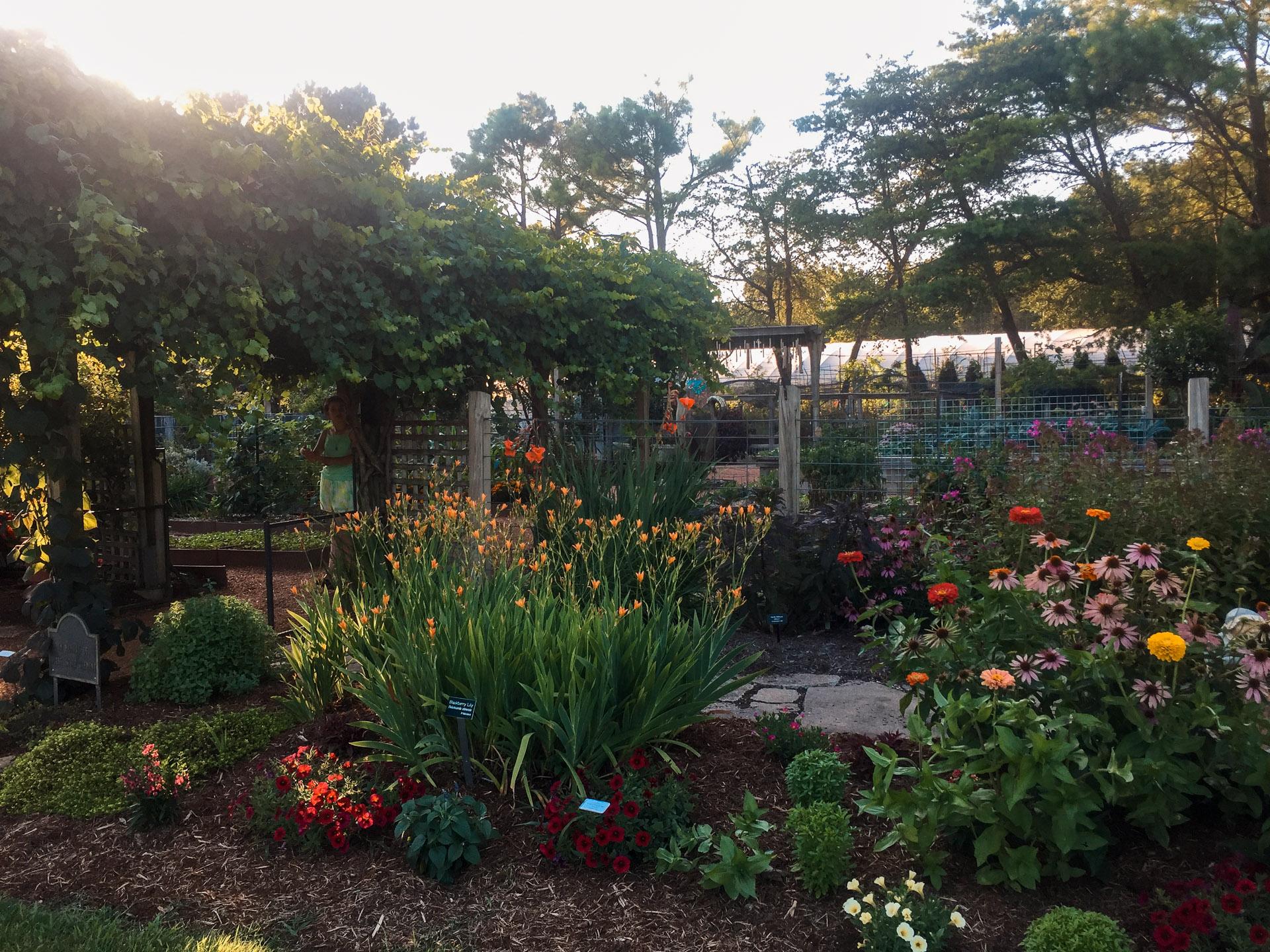 Botanical Gardens Of The Ozarks   Northwest Arkansas