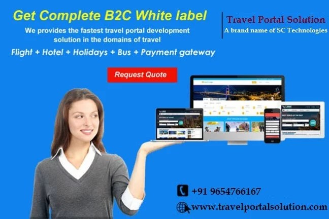 How B2C Travel Portal is Effective for The Online Firms