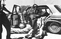 alwyn wolfaardt suplica por su vida momentos antes de ser ejecutado por un policia, bophuthatswana, marzo de 1994 (fotos de kevin carter).