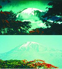 """No se puede mostrar la imagen """"https://i0.wp.com/www.pagina12.com.ar/fotos/radar/20061105/notas_r/kilimanjaro.jpg"""" porque contiene errores."""
